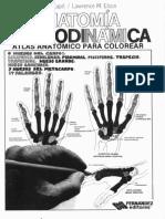 Anatomía Cromodinámica.pdf