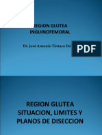 REGION-GLUTEA-INGINOCLURAL-Y-MUSLO-copia.ppt