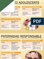 Paternidad y Embarazoadolescentepaternidadresponsableylosanticonceptivos 150526040213 Lva1 App6891