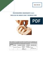63652825-Informe-Induccion-y-Reinduccio.doc