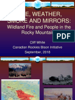 Fire, Weather, Smoke and Mirrors - Cliff White