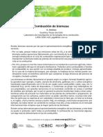 Combustión de biomasa.pdf