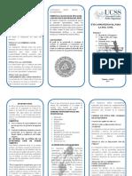TRIPTICO-ETICA-Ingenieria-Civil.docx