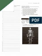 Axial Skeleton APR Worksheets