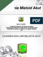2.2.4.2 Leukemia Non Limfoblastik Akut.pptx