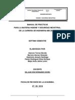 MANUAL-Practica-Higiene y Seguridad PDF