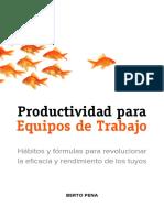 ProductividadEquipoSample.pdf