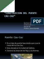 Exposicion Puente Cau-cau