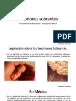 Embriones sobrantes