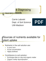 Diagnosing Nutrient Needs