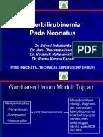HYPERBILIRUBIN  - ICTERUS NEONATUS.ppt