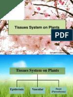 Biodas I - Bentuk dan Fungsi Tumbuhan.pptx