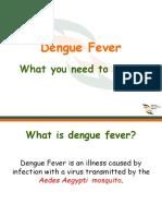 Dengue Fever Awareness Ppt(19 Sept 2011) ISL by Dr Firdous Roohi
