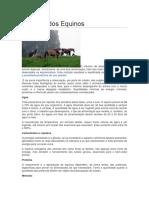 Nutrição Dos Equinos