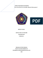 Jurnal fitokim 3 flavonoid.docx
