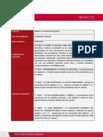 Guía de proyecto - S1 (2).pdf