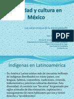 Etnias y Lenguas de Mexico