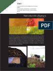 Portafolio Ricardo 2018 l.pdf