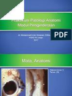 153059_Praktikum Patologi Anatomi penginderaan 2017(1).pptx