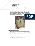 SOLUCIONES ALTERNATIVAS.docx