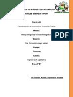 PRACTICA_1._MANEJO_INTEGRAL_DE_CUENCAS_EQUIPO_RIVER-MAN[1] (1).doc