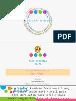 PPT DIARE-EVALIA(507).pptx