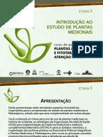 C1_E1_PPT_Introducao_ao_Estudo_de_Plantas_Medicinais