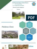 Calizas_Presentación_Apoyo.pptx