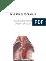 PR_DIVERTIKEL ESOFAGUS_dr santi.pptx