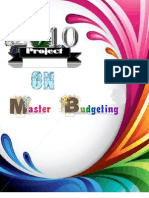 Master Budgeting. Project