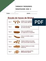 ESCALA DE BRISTOL  - PARASITOLOGIA   UNID 2018 - II.docx