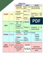 Biomolculas Cuadro Comparativo 1