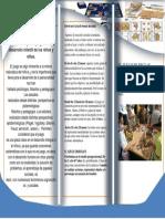 brochur.docx