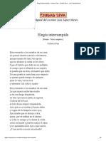 Elegía Interrumpida - Octavio Paz - Ciudad Seva - Luis López Nieves
