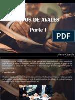 Nestor Chayelle - Tipos de Avales, Parte I