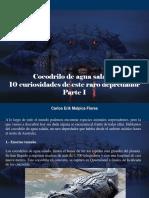 Carlos Erik Malpica Flores - Cocodrilo de Agua Salada, 10 Curiosidades de Este Raro Depredador