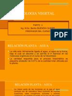 Fisiologia Vegetal II (2)