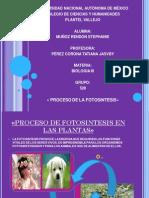 S.Muñoz_Present.fotosin