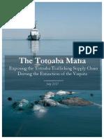 Totoaba reporte
