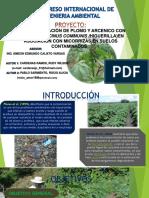 Fitorremediación de Plomo y Arcenico Con La Planta Ricinus Communis