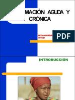 4. Inflamación Aguda y Crónica (Pag.111)