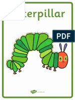 Vocabulary. the Very Hungry Caterpillar