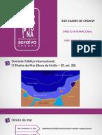Maratona_Direito-Internacional_NAPOLEÃO-CASADO (1).pdf