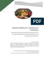 Carbohidratos Reporte