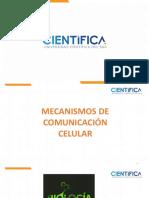Clase_4(7).pdf