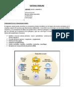 Chopita - Inmunidad innata.docx