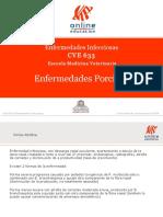 Enfermedades en Porcinos.pdf