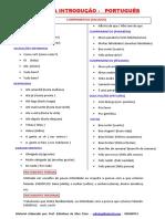 RESUMO DA INTRODUÇÃO COMPLETO.pdf