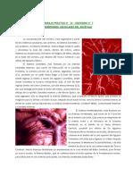 TERRITORIOS VASCULARES.pdf