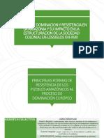 Formas de Dominacion y Resistencia en La Amazonia